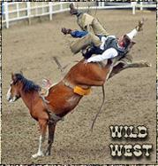 http://wild-west.my1.ru/avatar/54/129029.jpg